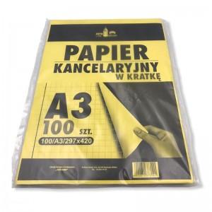 Papier kancelaryjny A3...